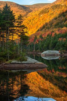 Dawns Foliage Reflection North Of Woodstock, New Hampshire.