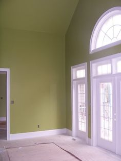 Sherwin Williams Sassy Green Living Room FP Mantle love it