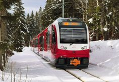[CH] Fancying skiing in the Swiss Alps? These new Stadler trains might take you there soon – Railcolor News Mall Of America, North America, Beach Trip, Beach Travel, Swiss Railways, Royal Caribbean Cruise, London Pubs, Rolling Stock, Lake Geneva