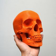 Do you have a habit of 3D printing skulls? There's a top ten list for  that.