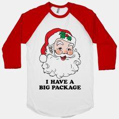 Santa's Package #santa #christmas #funny