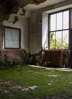Abandoned Island in New York - North Brother Island. Photo: 2e  http://www.travelbook.de/welt/North-Brother-Island-Diese-Insel-ist-New-Yorks-duesterstes-Geheimnis-565862.html