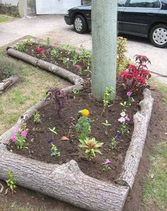 Garden Bed Edging with Logs | Top 28 Surprisingly Awesome Garden Bed Edging Ideas