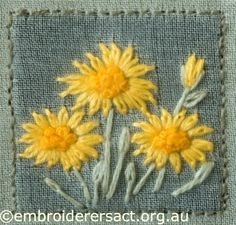 Yellow Paper Daisy from Australian Landscape and Flora stitched by Lorna Loveland
