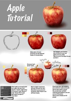 Apple Tutorial by Fievy on DeviantArt Digital Painting Tutorials, Digital Art Tutorial, Art Tutorials, Digital Paintings, Painting Lessons, Painting Tips, Art Lessons, Apple Painting, Fruit Painting