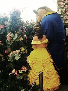 Belle and Beast from Beauty and the Beast