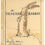 Velveteen Rabbit is one of my favorite books of all time. It is a wonderful children's story, but I did not hear of it until adulthood~and it was wonderful to discover. This Is A Book, Up Book, I Love Books, Good Books, Big Books, Beatrix Potter, William Nicholson, Somebunny Loves You, Wedding Readings