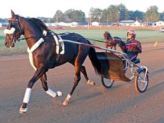 Wiggle It Jiggleit, driven by Montrell Teague, gets ready for ...