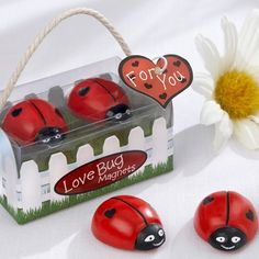 Ladybug Magnets Favor by Beau-coup