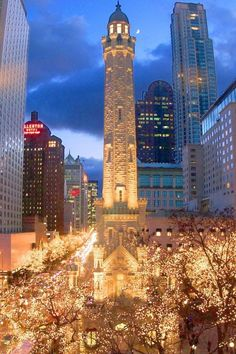 Magnificent Mile, Chicago, Illinois Fantastic city to get in the Christmas spirit! Oh The Places You'll Go, Places To Travel, Places To Visit, Chicago Christmas, Chicago Winter, Chicago In November, December, Nova Orleans, San Diego