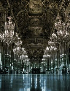 Paris Opera House. Amazing.