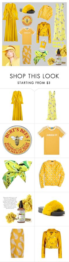 """""""//Bright In Yellow//"""" by claraxschmidt on Polyvore featuring Merchant Archive, MSGM, adidas, Lulu in the Sky, J.Crew, Rasolli, Dries Van Noten, Boohoo and Chanel"""