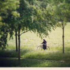 #heading to #pleschingersee  for #linztriathlon #triathlon #goodluck #goodmorning #bike #radfahren #linz #linzpictures #sports #trinews #news #breaking #sprint #olympics #donaupark #urfahr #igerslinz #swim #run #ketterechts #biking #fitness #vegan #sportlich #start #igersaustria #trinews