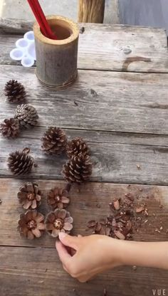 Painting on #pinecones, make some flowers with pinecones#painting#diy#Dearlives