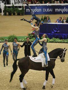 Team equestrian vaulting