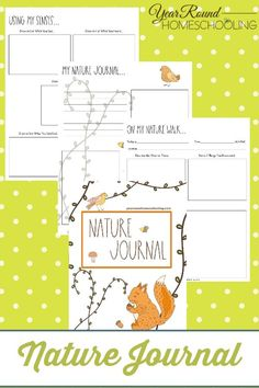 Getting started with nature journaling in your homeschool with this easy to use Nature Journal featuring drawing activities, journal pages and more! Free Homeschool Curriculum, Homeschooling, Drawing Activities, Outdoor Learning, Skills To Learn, Nature Journal, Nature Study, Walking In Nature, Science And Nature