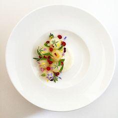 Canary Melon & Pequea Valley Farm's Yogurt with Wine Berries & Flowers from my Garden - #hhmkt #myfood #fromscratch #foodart #chefstalk #gastroart #wildchefs #theartofplating #chefsofinstagram #foodporn #foodart #truecooks #expertfoods #foodstyling #sharefood #gastronomy by adamseancron