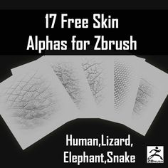 Download 17 FREE ZBrush Skin Alphas Pack ! Free ZBrush Human Skin Alpha, Elephant Skin, Snake Skin & Lizard Skin Alpha Textures for Texturing 3D Models.