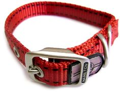 Hamilton 1Inch by 22Inch Single Thick Nylon Pet Sport ID Dog Collar Red *** See this great product.
