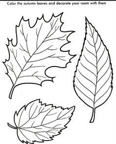 Printable 50 Leaf Coloring Pages 659 Tree Leaves Page