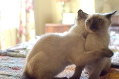 """""""What, why is this happening to me?"""" 