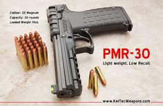 Kel-Tec PMR-30: 30 rounds of .22 Magnum. Need one on my nightstand.