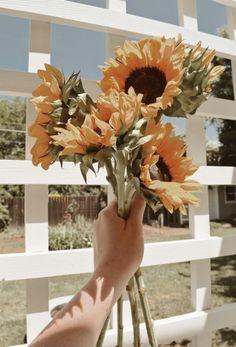 46 Trendy Yellow Aesthetic Wallpaper Iphone Sunflowers – Best Home Plants Yellow Aesthetic Pastel, Aesthetic Pastel Wallpaper, Aesthetic Colors, Aesthetic Collage, Flower Aesthetic, Aesthetic Backgrounds, Aesthetic Wallpapers, Pastel Yellow, Summer Aesthetic