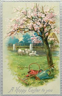 A HAPPY EASTER TO YOU  four distant sheep, large blossom tree, rake, water-can & basket