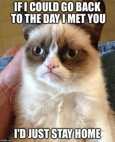 Grumpy Cat | IF I COULD GO BACK TO THE DAY I MET YOU I'D JUST STAY HOME | image tagged in memes,grumpy cat | made w/ Imgflip meme maker