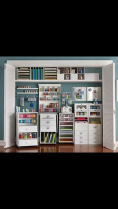 Good Inspiration...pick different pieces out for small craft closet!