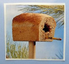 DIY: Bread house for the birds! A clever use for stale bread. and the birds will love it! But it may NOT BE a very good house when BAD RAIN/SNOW weather comes,. The bread will get very wet and mushy, and it will NOT A BE A DRY SHELTER for the birds. Outdoor Projects, Easy Diy Projects, Make Your Own, Make It Yourself, How To Make, Jardin Decor, Ideias Diy, Yard Art, Bird Feathers