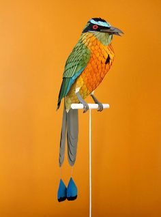 colombian artist diana beltran herrera's collection of paper birds includes hundreds of species, each carefully crafted from cardboard and construction paper.