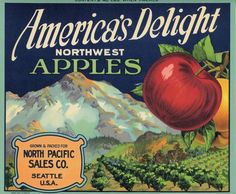 America's Delight Snowy Mountains Red Apple Fruit Crate Label