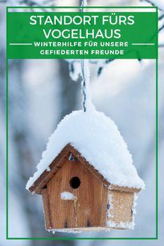 Vogelhaus DIY: Viele Gartenfreunde sind auch Vogelfreunde. Im Herbst und Winter, wenn es draußen unwirtlich und die Nahrung knapp wird, ist es an uns, den Gartenvögeln Gutes zu tun. Futterhäuser und Nistkästen sind eine gute Möglichkeit, Vögeln wie Meisen, Spatzen oder Rotkehlchen über die kalte Jahreszeit zu helfen. Wir erklären, was es rund um Vogelhäuser zu beachten gilt und weshalb das Gartenhaus und überdachte Terrassen ideale Standorte sind. #Vogelhaus #Vogelhäuser #Nistkasten Outdoor Decor, Winter, Home Decor, Kindergarten, Garden, Flowers, Lawn And Garden, Profile, Bird House Plans