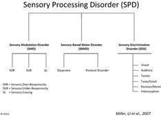 SPD Foundation - Sensory Processing Disorder - Subtypes of SPD. Repinned by SOS Inc. Resources @SOS Inc. Resources.