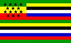 Historical Flags of Our Ancestors - Modern American Protest and Message Flags African American Flag, Marcus Garvey, American Houses, Flag Patches, Pop Culture Art, Alternate History, Beautiful World, Consciousness, Africa