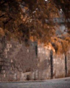 2020 NEW HD CB EDITING BACKGROUND Dslr Blur Background, Background Wallpaper For Photoshop, Light Background Images, Background Images Wallpapers, Picsart Background, New Backgrounds, Background Pictures, Indian Flag Images, Best Free Lightroom Presets
