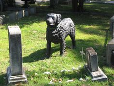 Supposed to be able to hear the dog bark when approaching the little girl's grave. Hollywood Cemetery ~ Richmond, Virginia