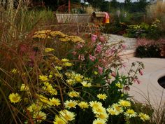 Tatton Park, Aqua Life Garden
