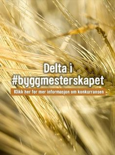 Belgiske vafler – Opplysningskontoret for brød og korn Korn