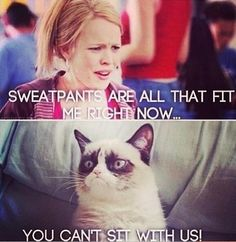 Grumpy cat // mean girls