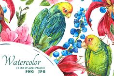 Tropical Flowers and Green Parrot by Depiano on Creative Market