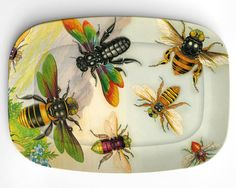 painted plate  http://www.etsy.com/listing/95886093/bees-antique-artwork-of-insects-on-10-x