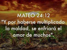 """"""" Y por haberse multiplicado la maldad, se enfriará el amor de muchos"""".  Mt 24.12"""