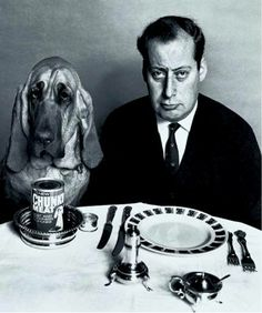 Henry with Clement Freud. A British dog food commercial. Although there's nothing on his plate, Freud was a first class chef. Pet Steps, Giving Up Smoking, Vintage Tv, I Remember When, Teenage Years, My Memory, The Good Old Days, Back In The Day, Childhood Memories
