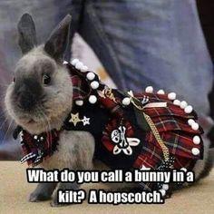 Happy Birthday, Hopscotch
