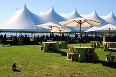 A corporate event on the Burlington Waterfront with our Modular Tent & Umbrella tables with Natural Folding chairs.