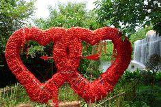 "Big ""Hearts to Hearts"" at Sanya! #Sanya #Whererefreshingbegins #SanyaHeartstoHearts #SanyaRepin ' #Wedding #HandinHand #Honeymoon #Travel #Life #Love #YalongBay #TropicalParadiseForestPark"