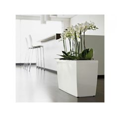 Lechuza Rondo Planter Plant Containers Pinterest