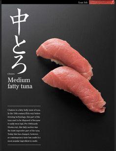 Sushi (Nigiri) - Chutoro